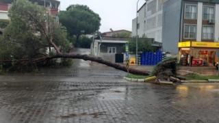 Fırtına İsabeyli Mahallesini de Vurdu