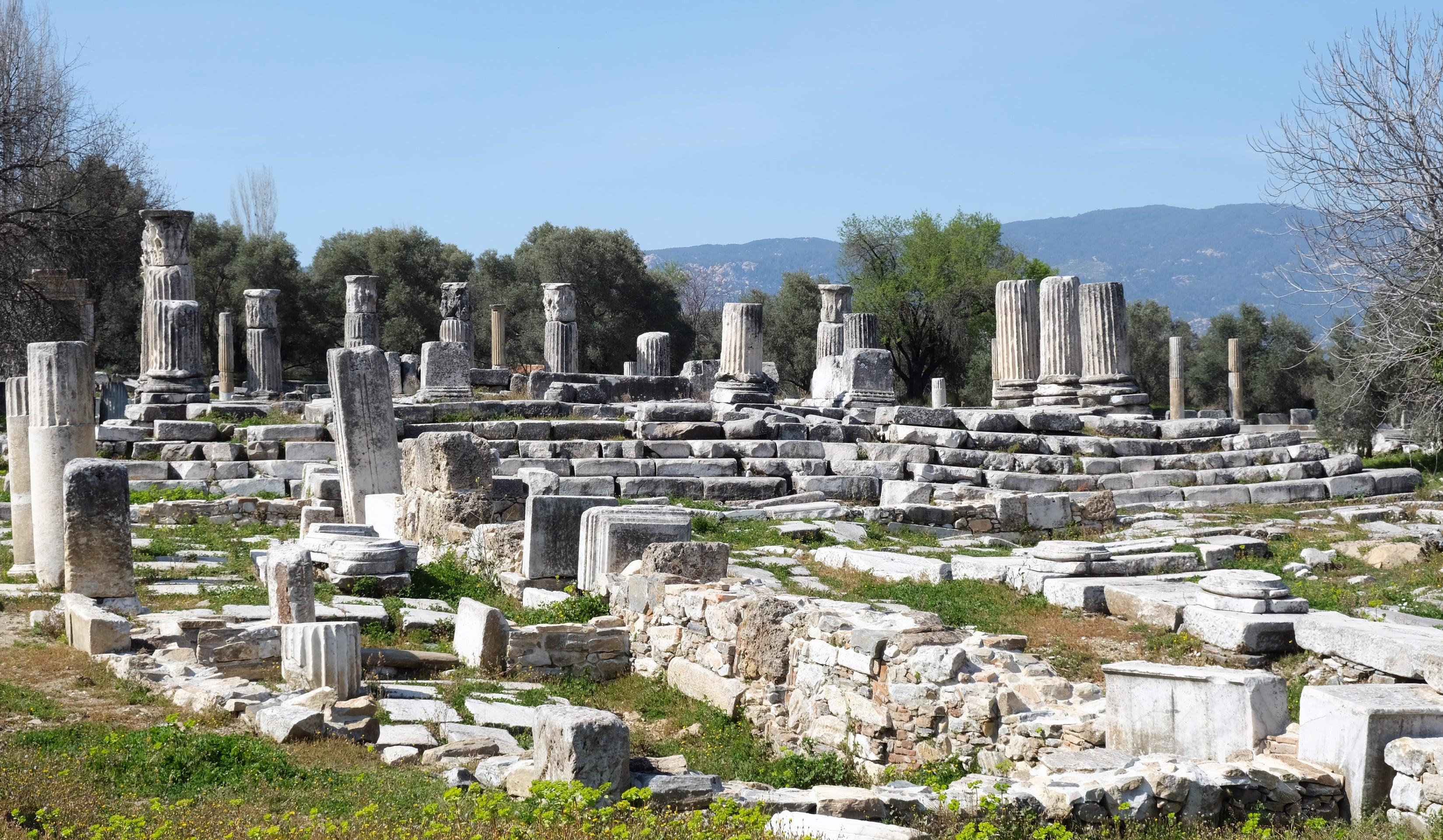 2 bin yıllık sütunlar ayağa kalktı